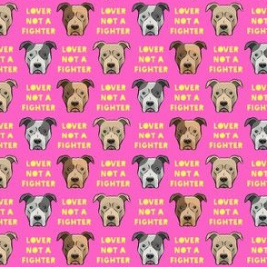 "(3/4""  scale) lover not a fighter - pit bull on yellow (raspberry text) C19BS"