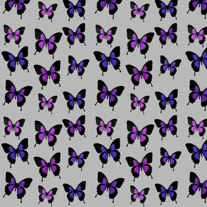 Butterfly Bonanza-Light