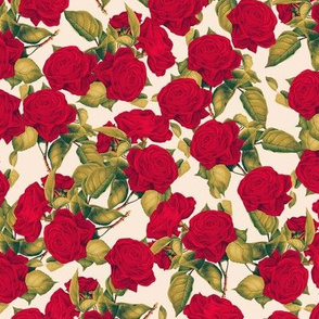 Red Roses On Cream