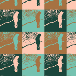 MOD Cockatoos - limited palette