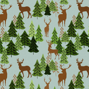 Deer In Pine Woods
