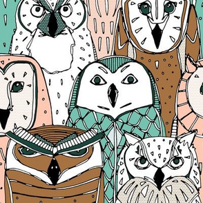 owls limited