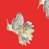 Hummingbird Pepper Red