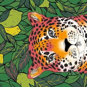 Leopard Portrait & Lemon Trees