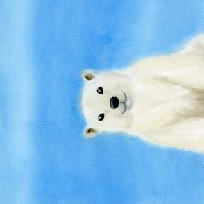 Rwhite_bear_shop_thumb