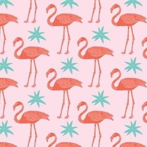 Coral flamingos