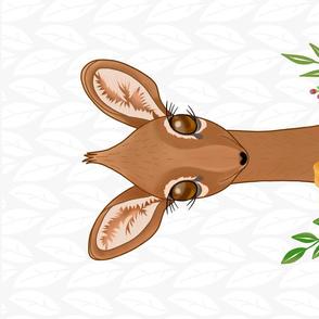 Dik-Dik Baby Antelope