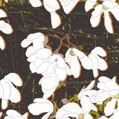 magnolia on brown