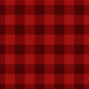 NEW Gingham_Lumberjack Red
