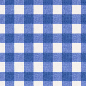 NEW Gingham_Persian Blue