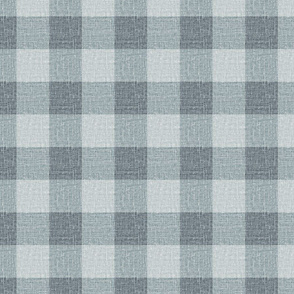 NEW Gingham_Ironstone Blues