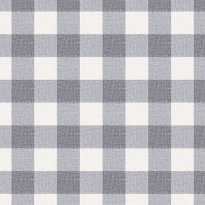 NEW Gingham_Silver blue