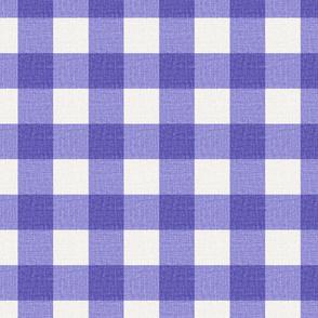 NEW Gingham_Iris Purple