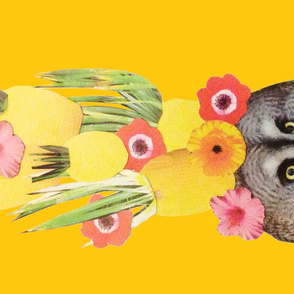 Pine-owl-ple