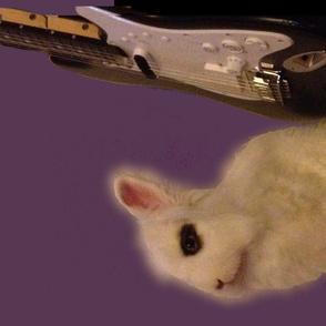 Rocking Rabbit