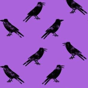 Ravens  on purple - halloween - LAD19
