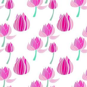 Lotus beautiful my