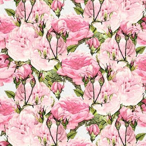 Soft Pink Watercolor Peony Floral Pattern