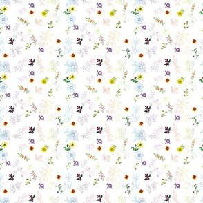 GainesCountyWildFlowersMixed_Rainbow3