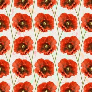 Red Poppy Pattern Seamless