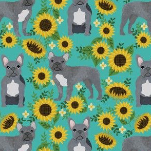 french bulldog sunflower fabric - frenchie fabric, grey french bulldog, grey frenchie fabric, sunflower fabric, cute dog fabric -  turquoise