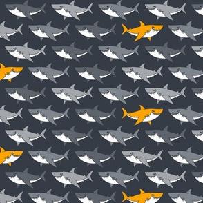 Happy Sharks_03