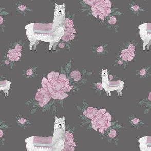 Llama Floral Pattern