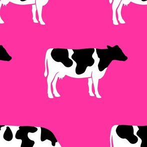 (large scale) cows on hot pink - farm fabric C19BS