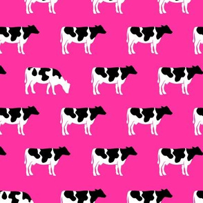 cows on hot pink - farm fabric C19BS