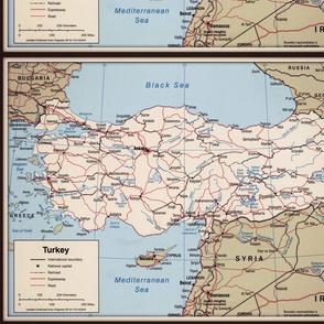 Turkey map, small, FQ