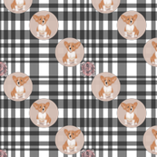 corgi dot on plaid-floral