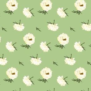 white peonies on green