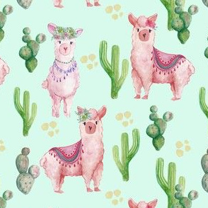 Llama and cactus on Mint