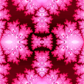 Deep Pink Frost Fractal Abstract