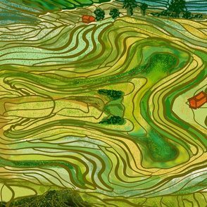 Terraced Rice Paddy Fields Large Scale