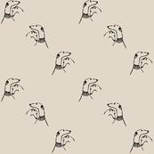 sighthound friendship
