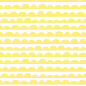Scallop (Yellow)