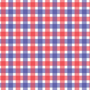 July 4th Gingham Red White Blue