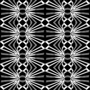 Black and White Web Pattern