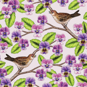 Songbirds & Pansies - Pink & Purple Floral Pattern w/ Birds
