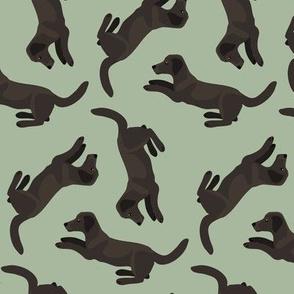 Black Labradors Allover