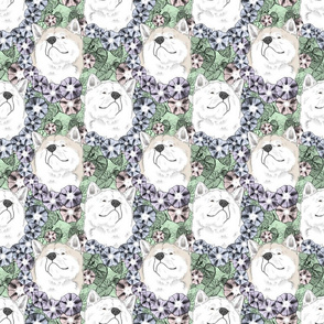 Floral White Japanese Akita Inu portraits