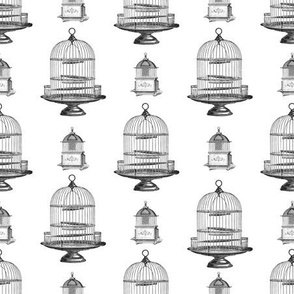 Vintage Bird Cage Black White