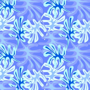 Borora blue