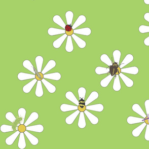 Bugs on Daisies in Green