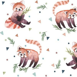 RED PANDAS WATEWRCOLOR