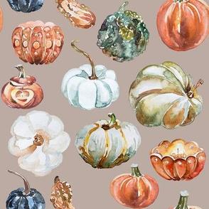 Organic Pumpkins // Silk
