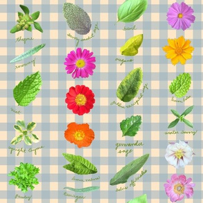Garden Shoots And Ladders Blue Gingham