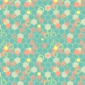 Honeycomb Tropical Hexagon