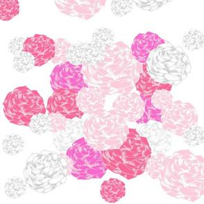 rose blooms - pink XXL1867